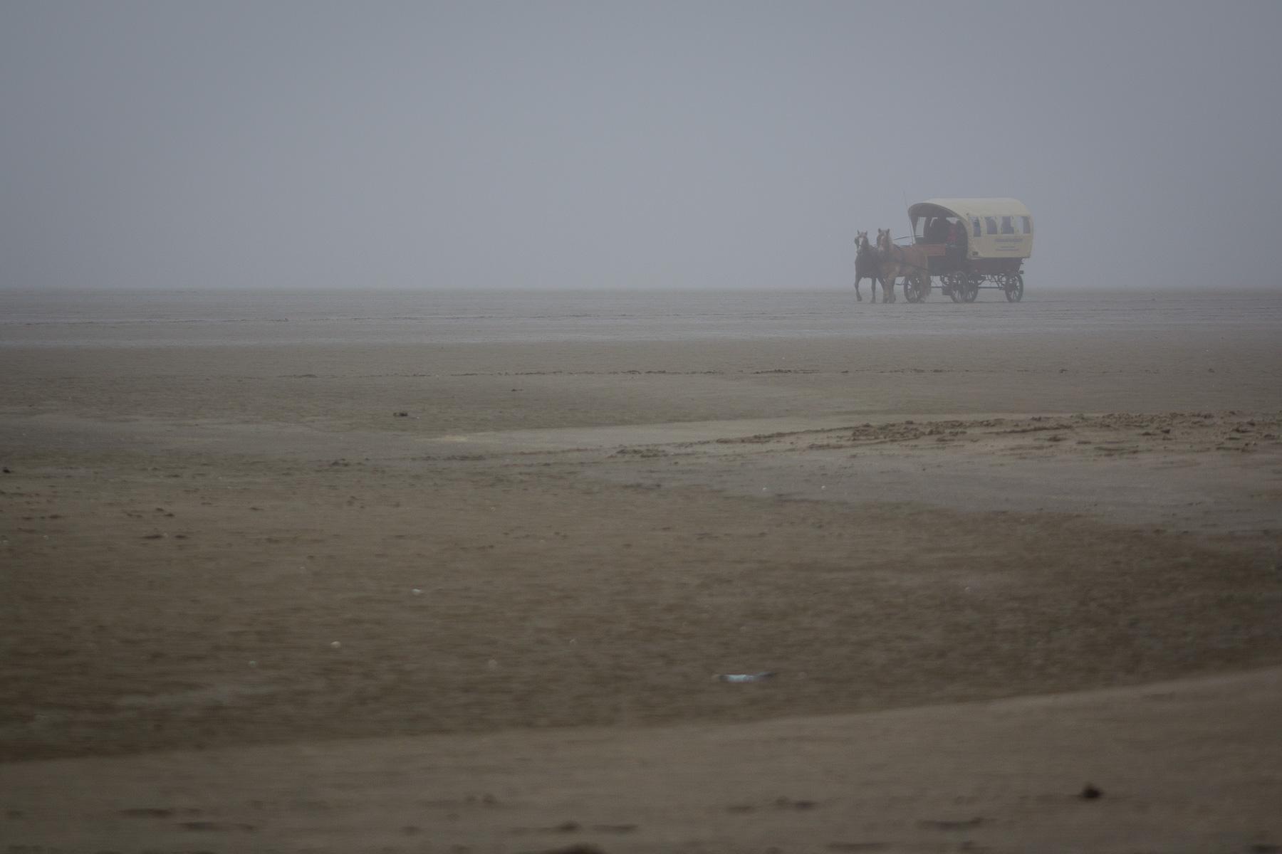 kutsche, borkum im nebel